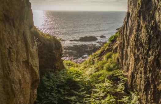 An open gunnis in a Cornish cliff, created hundreds of years ago by Cornwall's tin miners.